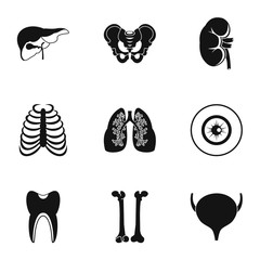 Bodies icons set, simple style