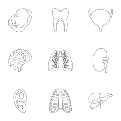 Structure of body icons set, outline style