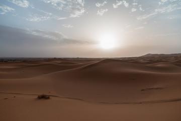 Deserto con sole