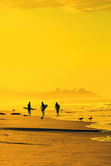 Surfers on California beach at sunset