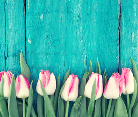 Frame of tulips on turquoise rustic wooden background. Spring flowers. Spring background. Greeting card for Valentine's Day, Woman's Day and Mother's Day. Top view