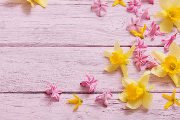 flowers on pink wooden background