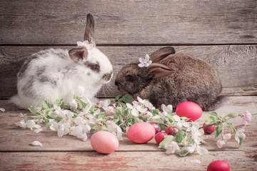 two rabbits on wooden background