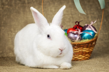 White clean beautiful Easter bunny next to a wicker basket with eggs in the background krashenyymi natural burlap cloth