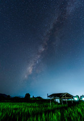 Milky way galaxy with stars and space dust in the Green Terraced Rice Field in Thailand