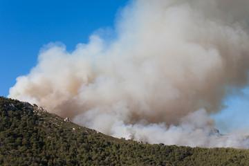 fumée avec un feu de forêt