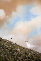 hélicoptères qui jettent de l'eau au dessus d'un feu de forêt