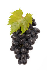 Juicy Grapes on white background