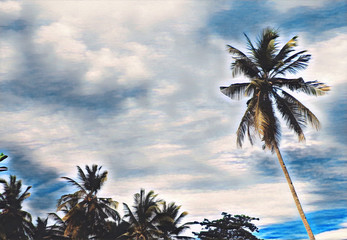 Palm tree garden and sunset sky landscape. Digital illustration of tropical vacation