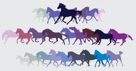 Set of vector colorful running horses silouettes