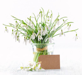 bouquet of fresh snowdrops flowers with a paper card on white background