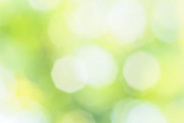 Blurred abstract spring background with patches of sunlight