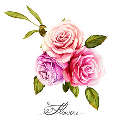 Bouquet of roses. Hand drawn. Can be used as design element in background, greeting cards, covers, etc. Vector stock.