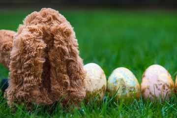 Bunny and Golden Easter Eggs