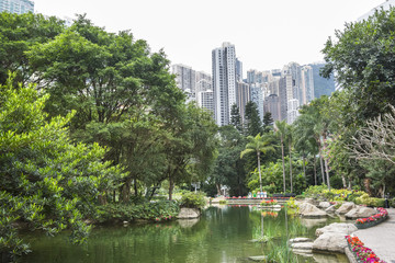 A view of the lake in Hong Kong Park