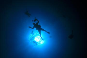 Scuba dive diving divers