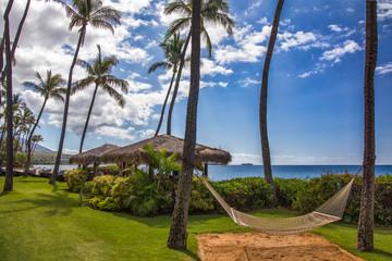 Wall Mural - Hawaiian resort with hammock