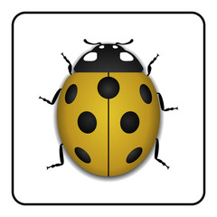 Ladybug small icon. Yellow lady bug sign, isolated on white background. 3d volume design. Cute colorful ladybird. Insect cartoon beetle. Symbol of nature, spring or summer. Vector illustration