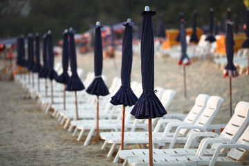 Long row of empty sunbeds and umbrella on a tropical beach.