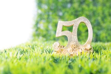 50 Jahre Jubiläum auf Wiese