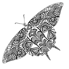 Butterfly with ethnic doodle pattern. Zentangle inspired pattern for anti stress coloring book pages for adults and kids.