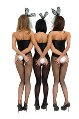 Sexy girls wearing a bunny costumes, back view