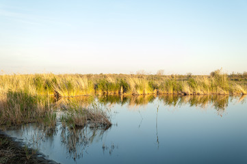 Small lake under nice sky, evening scene on lake in steppe