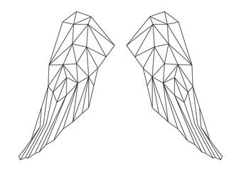 Le ali chiuse, design geometrico di linee nere sullo sfondo bianco