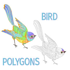 Rainbow bird polygons coloured and outline vector illustration