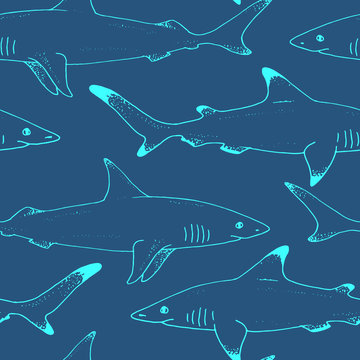 Seamless pattern with vector shark hand drawn illustration with wild sea animal. Sea life sketch with predator dangerous fish. Coloring book illustration