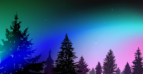 Silhouette of coniferous trees on the background of colorful sky.  Night. Northern lights. Blue, pink and turquoise tones.