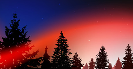 Silhouette of coniferous trees on the background of colorful sky.  Night. Northern lights. Blue and red tones.