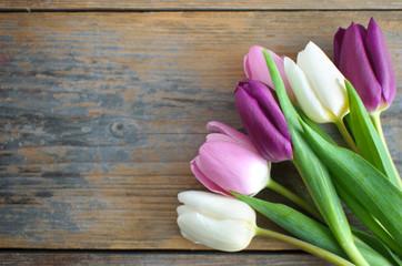 Fototapete - Tulips on wooden background