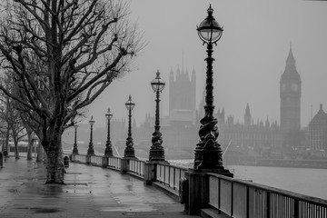 Garden Poster London London, Big Ben, Houses of Parliament and Westminster of a foggy Winter's morning.