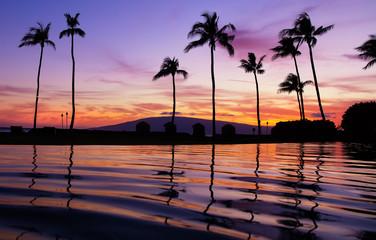 Wall Mural - Purple hawaiian sunset over pool