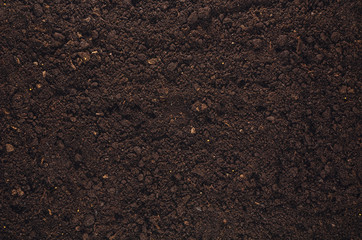Fototapeta Fertile soil texture background seen from above, top view. Gardening or planting concept with copy space. Natural pattern obraz