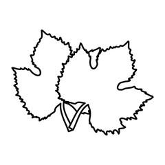 leaves tree grape wine design vector illustration eps 10