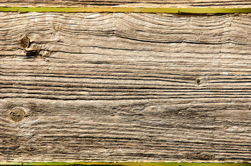 The texture of old wood (board).
