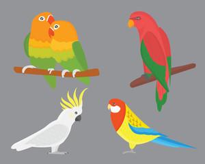 Cartoon tropical parrot wild animal bird vector illustration.