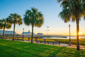 Wall Mural - The Waterfront Park in Charleston