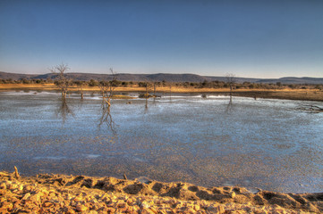 Water Hole, Madikwe