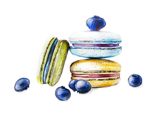 Illustration of hand painted colorful macarons with berries on white background
