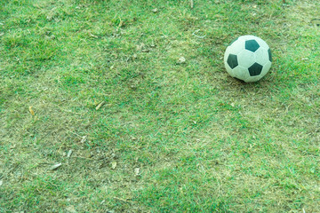 Old football on the lawn free for player.