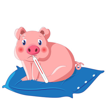 swine fluvector illustration of little cute pig with thermometer having swine flu also known as h1n1 on blue pillow