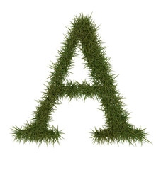 A Green grass alphabet