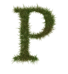 P Green grass alphabet
