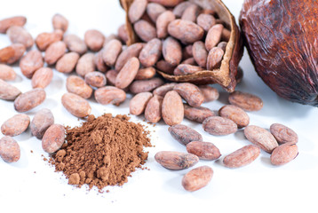 cocoa beans and cocoa fruit on white