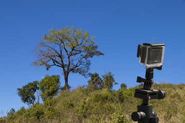 action camera on tripod with tree and blue sky as background - landscape scene