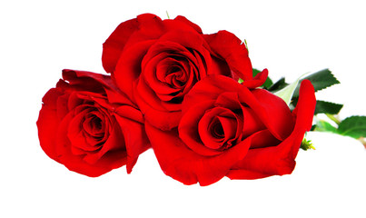 Three red roses.