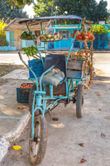 Produce Stand in Cuba
